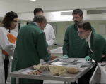 Dissection Room