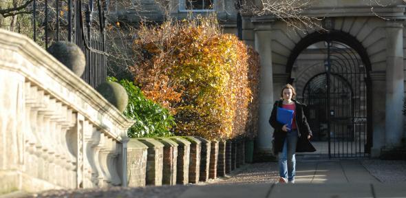 Student on bridge