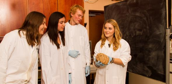 Psychology student with brain